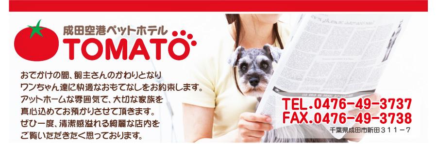 成田空港ペットホテルTOMATO