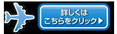 成田空港駐車場ココパーキング