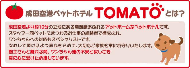 成田空港ペットホテルTOMATOとは?